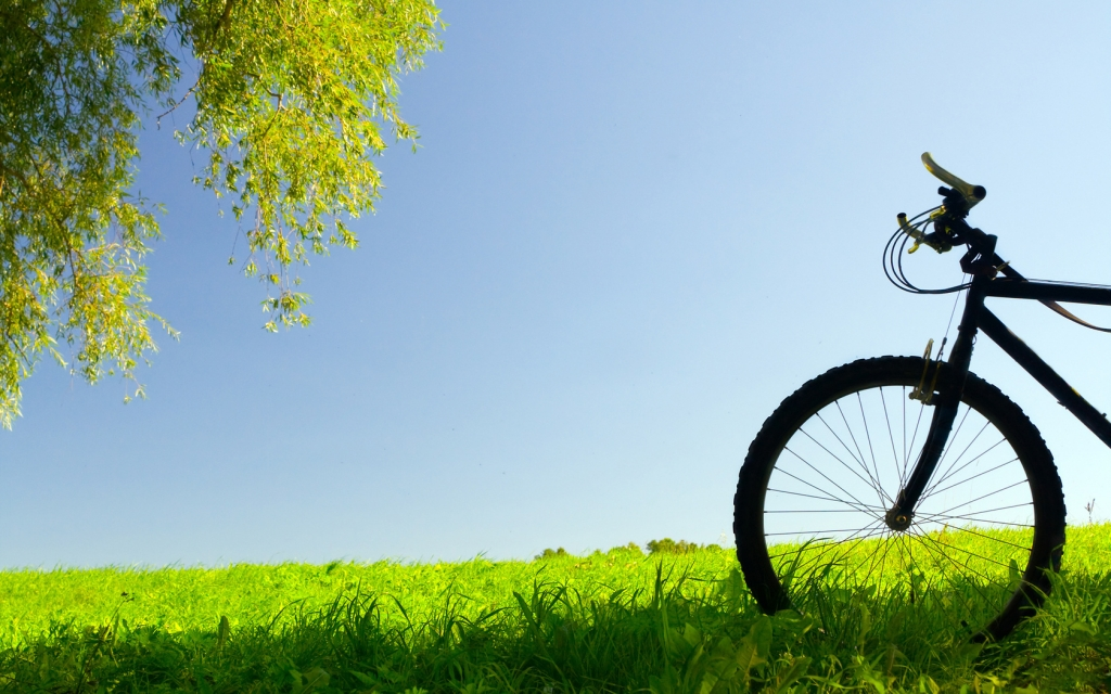 green-walls-bike.jpg